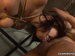 Submissive Asian bimbo Kana Sato gets roped and sucks cock